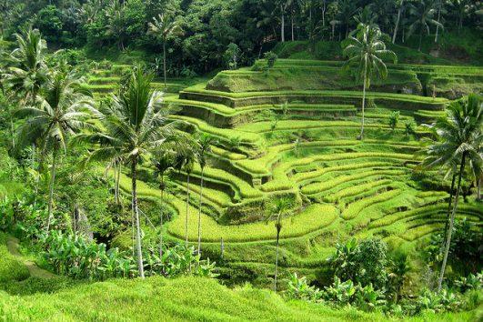 Bali kalandtúra